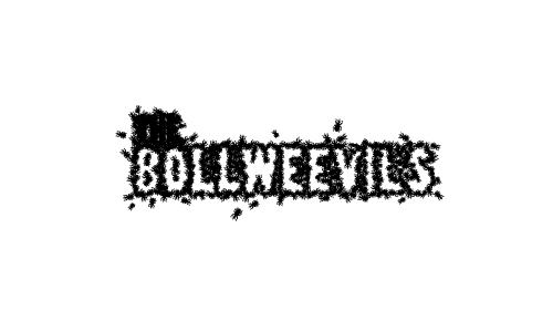 The Bollweevils Logo