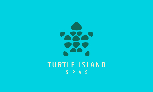 Turtle logo design - photo#16
